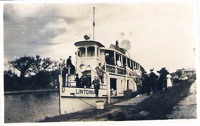 Lintonia, front view