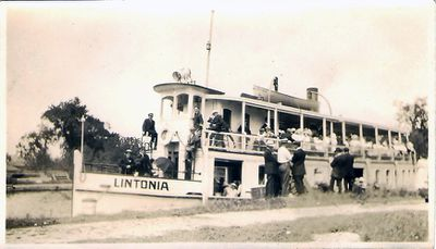 Lintonia, side view