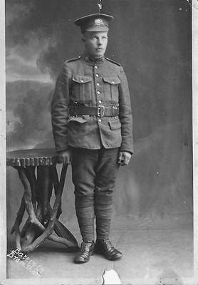 William Dwight Hamilton, 1916