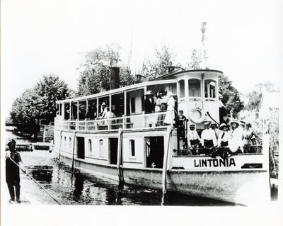Lintonia