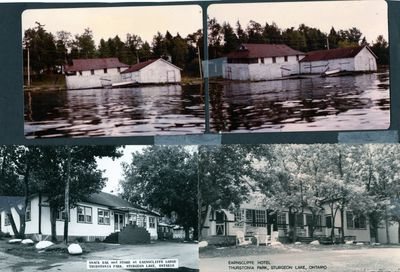 page 93 - Thurstonia Marina and Earnscliffe Hotel