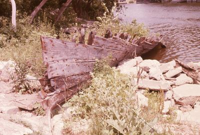 "Keel and ribs of ""Stoney Lake"" Steamer 1978"