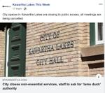March 17: City closes non-essential services, staff to ask for 'lame duck' authority