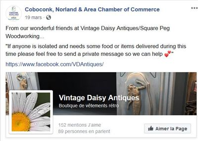 Vintage Daisy Antiques offers help for those isolated and in need