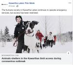 March 20: Animal shelters in the Kawarthas limit access during coronavirus outbreak