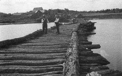 Two men standing on a log bridge