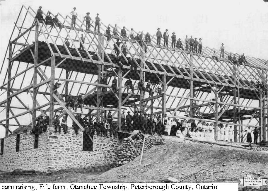 Fife barn raising, Otonabee, Peterborough County
