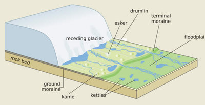 exhibit glacier diagram cramahe archives our past our present rh vitacollections ca labelled diagram of glacier diagram of glacier formation
