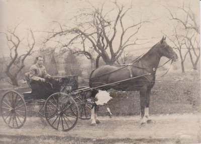 Photograph of a man driving a horse carriage, spring