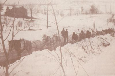Photograph of horse-drawn snow clearing teams, Dundonald