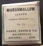 Marshmallow Leaves, Griffis Drug Store, Colborne, Cramahe Township