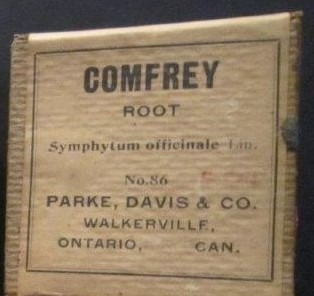 Comfrey root, Griffis Drug Store, Colborne, Cramahe Township