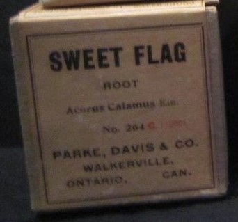 Sweet flag root, Griffis Drug Store, Colborne, Cramahe Township