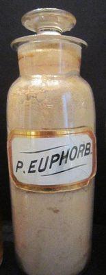 P. Euphorb., Griffis Drug Store, Colborne, Cramahe Township