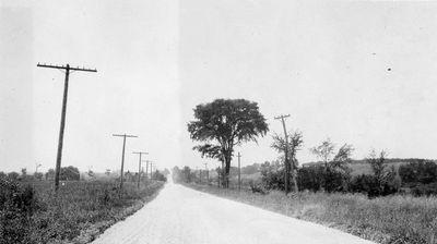 Photograph of Provincial Highway near Salem, Cramahe Township, 1923-4