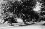Ellen Street
