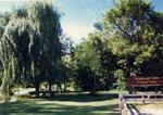 Cedarvale Park 1989