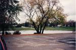 North-west arm of Fairy Lake 1990
