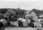 Garden View of 3 Tweedle Street c1920's