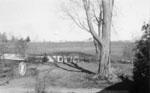 243 Guelph Street 1954