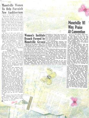 Star of the North WI Tweedsmuir Community History, Volume 3