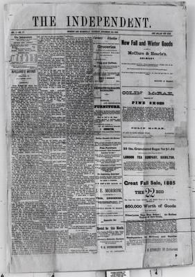 Grimsby Independent, 5 Nov 1885
