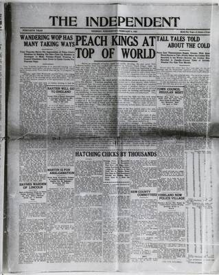 Grimsby Independent, 4 Feb 1925