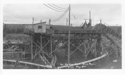 The Barking Plant, Black River, Heron Bay, Ontario