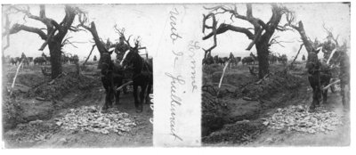 Horses and Cart at Somme