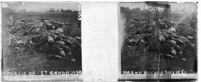 La Bataille des Marais de Saint-Gond