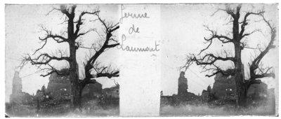 Ruins at Laurmont