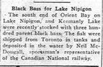 Black Bass for Lake Nipigon