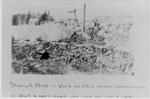 Shuniah Mine 1867-1881