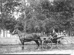 George Boy, Horse and Buggy (1895)