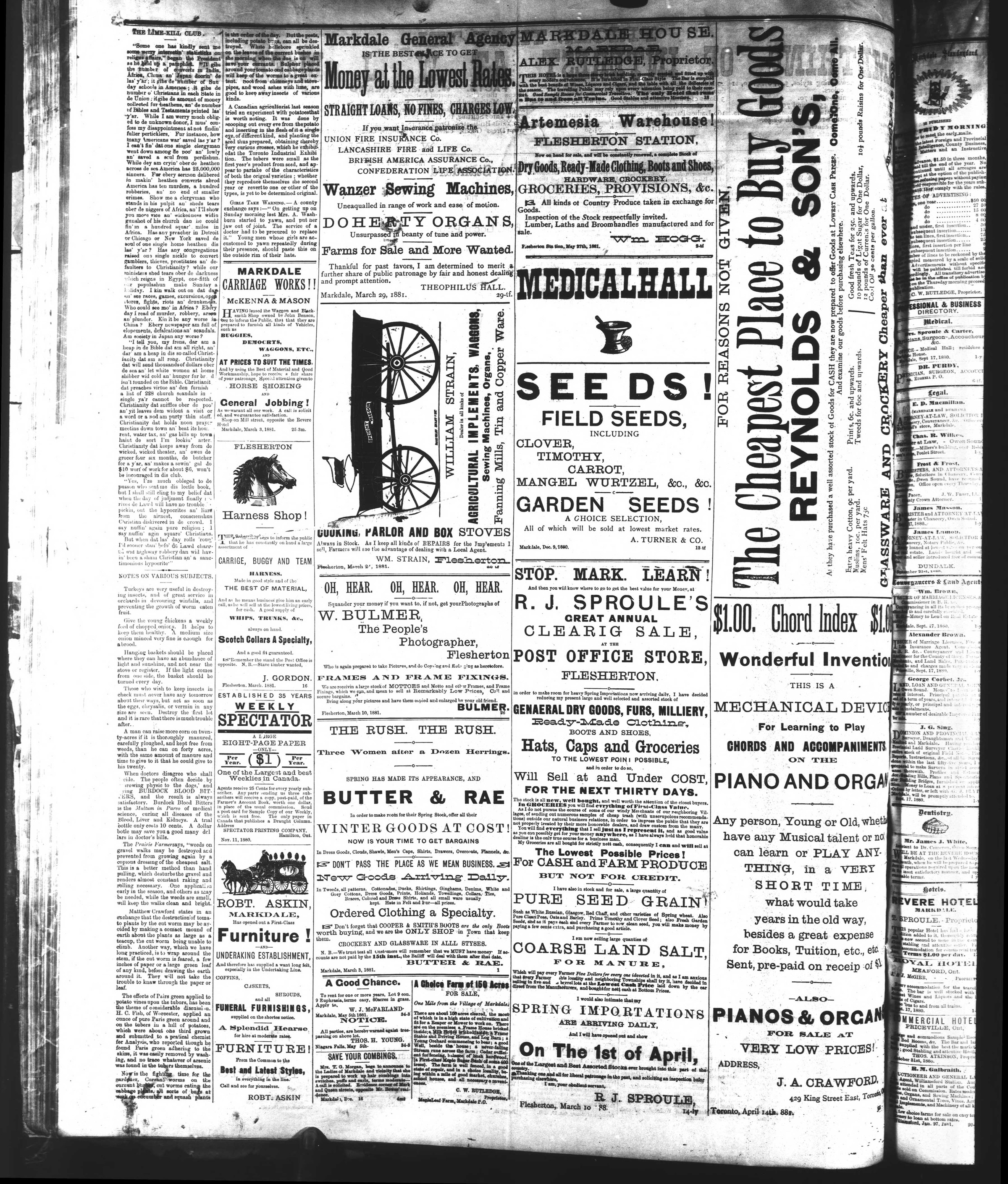 Markdale Standard (Markdale, Ont.1880), 1 Jul 1881