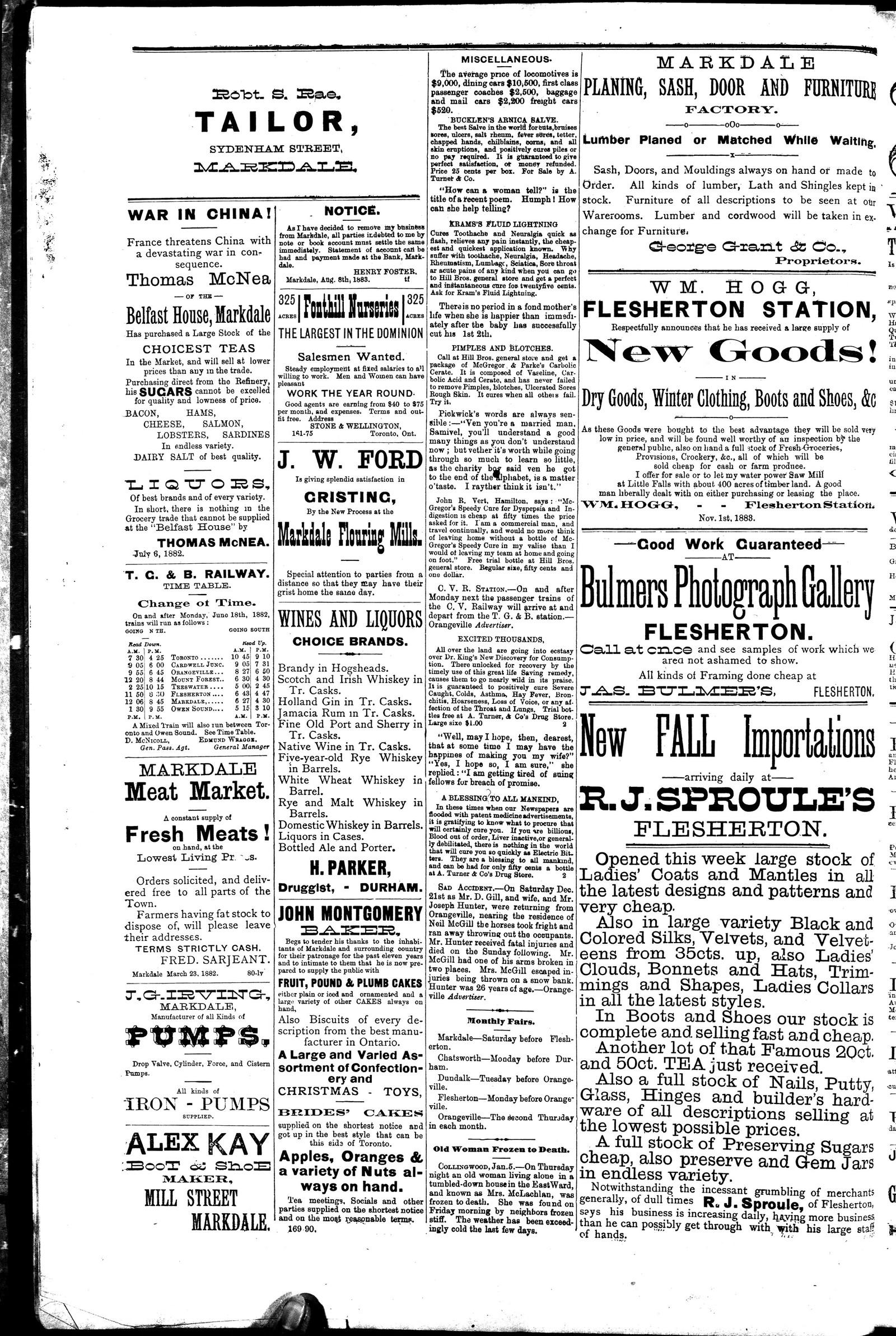 Markdale Standard (Markdale, Ont.1880), 10 Jan 1884