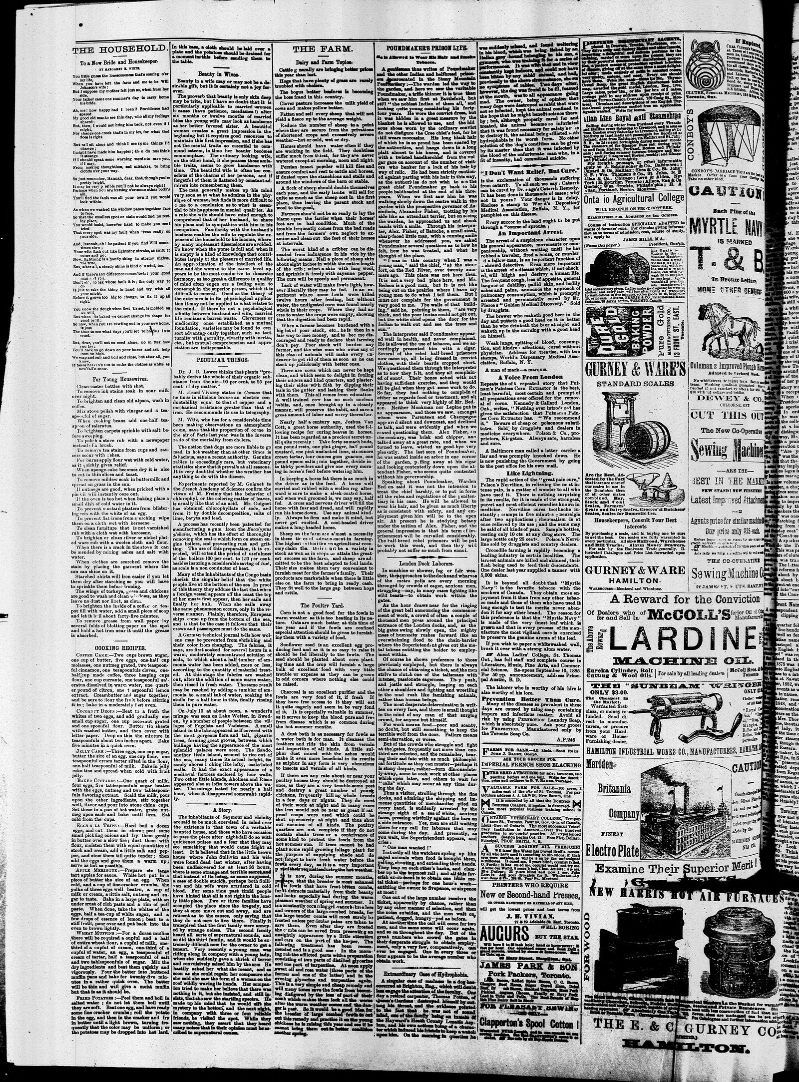 Markdale Standard (Markdale, Ont.1880), 17 Sep 1885