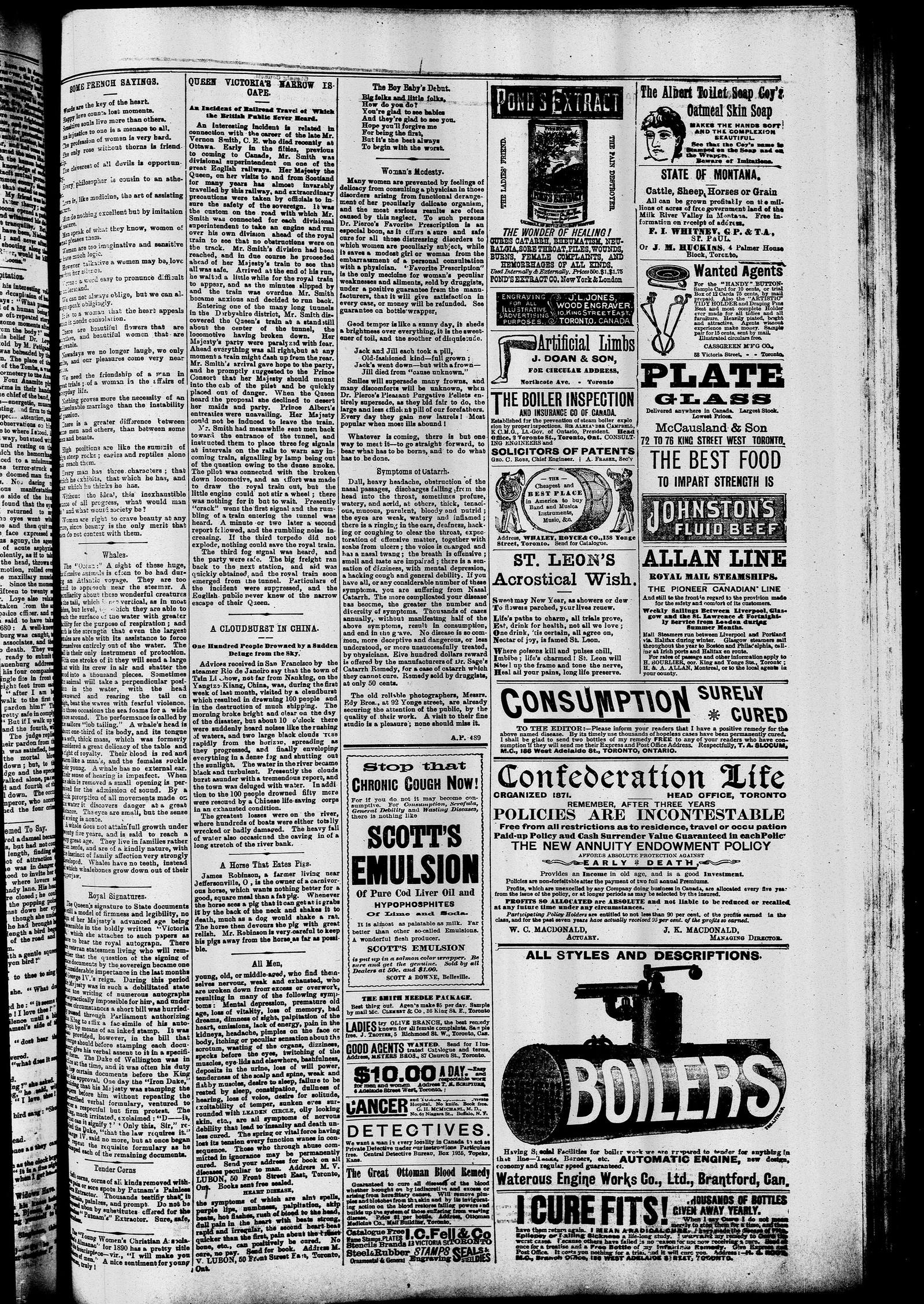 Markdale Standard (Markdale, Ont.1880), 20 Feb 1890