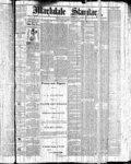 Markdale Standard (Markdale, Ont.1880), 3 Dec 1880