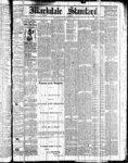 Markdale Standard (Markdale, Ont.1880), 7 Jan 1881
