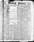 Markdale Standard (Markdale, Ont.1880), 4 Feb 1881