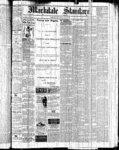 Markdale Standard (Markdale, Ont.1880), 18 Feb 1881