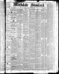 Markdale Standard (Markdale, Ont.1880), 11 Mar 1881