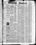 Markdale Standard (Markdale, Ont.1880), 25 Mar 1881