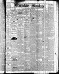 Markdale Standard (Markdale, Ont.1880), 1 Apr 1881