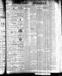 Markdale Standard (Markdale, Ont.1880), 20 May 1881