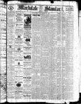 Markdale Standard (Markdale, Ont.1880), 30 Dec 1881