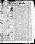 Markdale Standard (Markdale, Ont.)13 Jan 1882