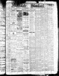 Markdale Standard (Markdale, Ont.1880), 21 Apr 1882
