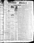 Markdale Standard (Markdale, Ont.)27 Jul 1882